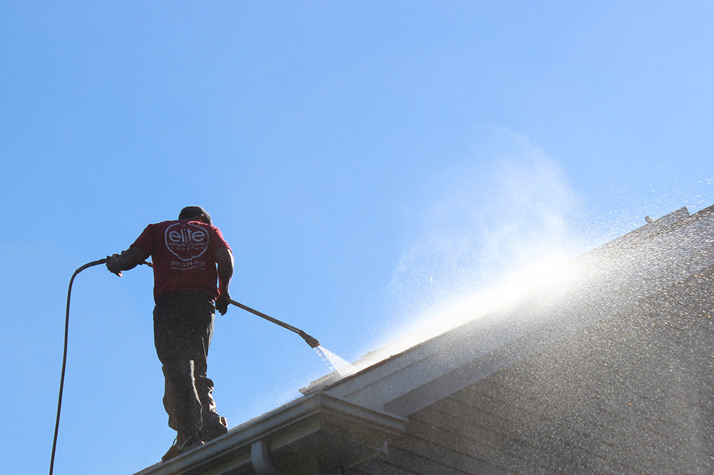 Professional Roof Cleaning Services